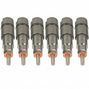 BD Diesel Injector Kit - 1998-2002 Dodge 24-valve 75hp 1075822